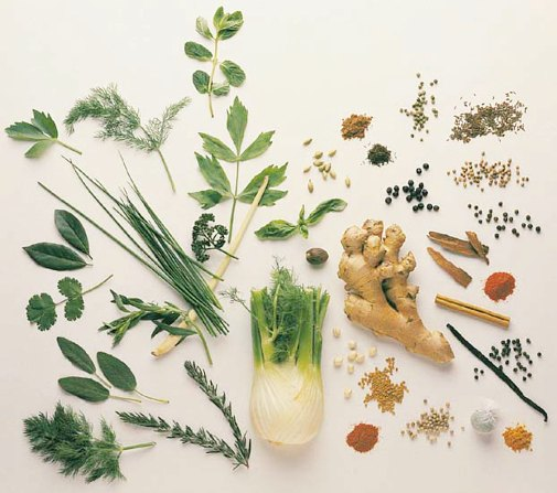 Herbal remedies for headache